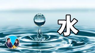 【震撼】目前信息量最大的一期影片,水 | 老高與小茉 Mr & Mrs Gao