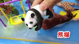 Learn Names of Ten Animals With Toy Education Video For Children
