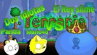 (Leer la descripción)Dos idiotas VS el rey slime Terraria online funny momments