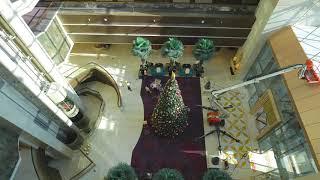 Christmas Tree Lighting Build | Dusit Thani Abu Dhabi
