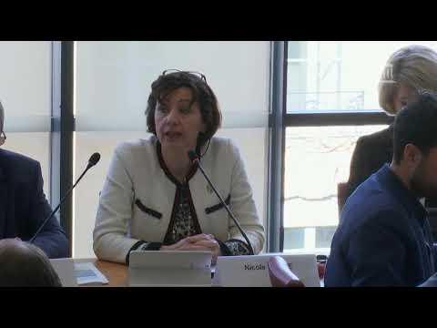 Audition commission des affaires étrangères 26 février 2020
