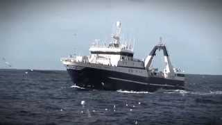 South African Deep Sea Trawl Fishery and MSC