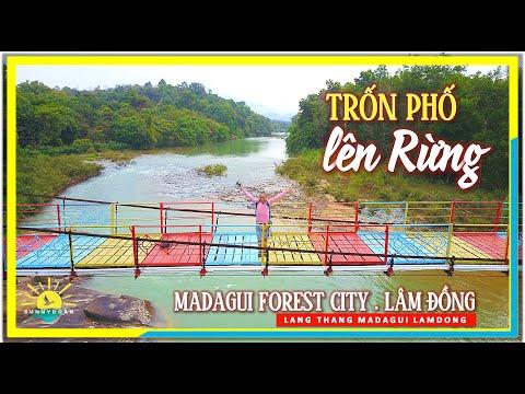 Trốn Phố Lên Rừng   Madagui Forest City   lang thang Madagui Lâm Đồng