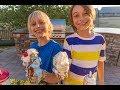 Giant DIY Ice-Cream Cones!  And Special Announcement!