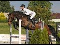 **ABSOLUTELY FANCY HUNTER**MAGIC, 2009, gelding, CZWB, by Cry for Me (Catoki)