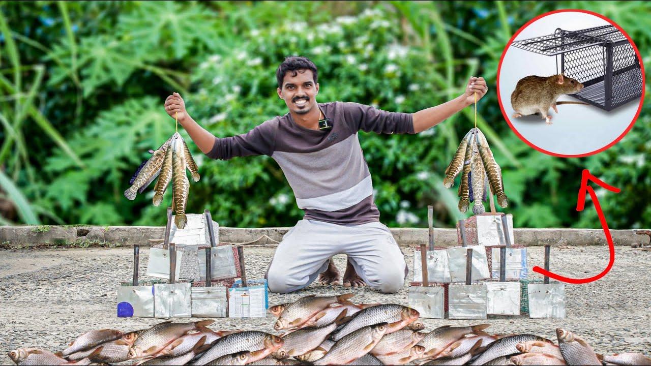 Mouse Trap வச்சி மீன் பிடிக்க முடியுமா 🤔🤔 | Mouse Trap Fishing Experiment