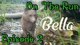 On the Run(EP2)-Toy Animal Series-