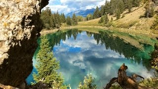 Jasper,cliff jumping, waterfalls, lakes, wildlife, skywalk & Columbia Icefield.