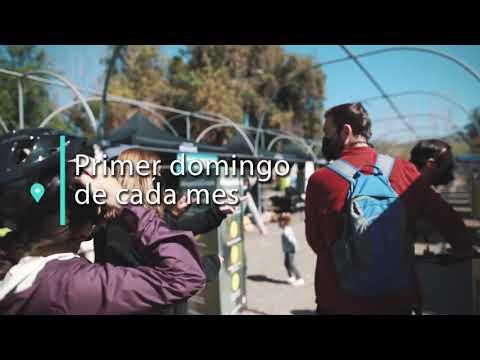 Mercado de Reciclaje: Es Hora de Volver!