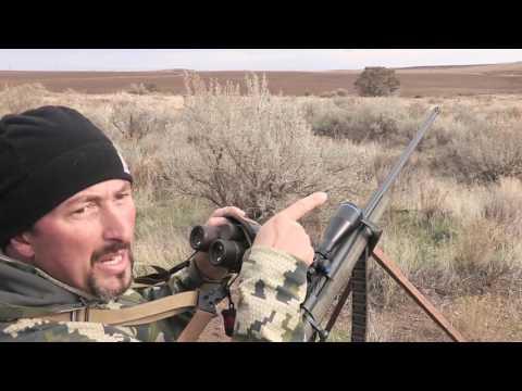 Hunting Coyotes In Oregon - Kill Shots