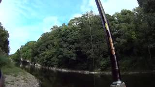 Daniel Loses a Fish at Carrig - River Blackwater - 23 August 2013