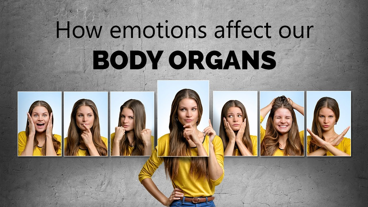 How emotions affect our body organs - YouTube