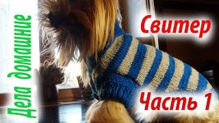 Свитер для собаки.Часть1.Одежда для собак своими руками на канале''Дела домашние''.