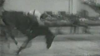 Record Mundial Salto Alto a Caballo aun no superado.