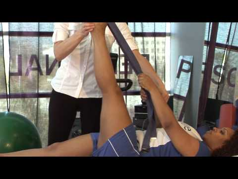 Lower Back Exercises for Back Physical Therapy : Physical Therapy