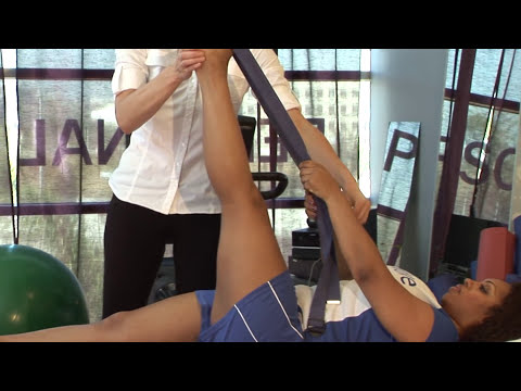 hq2 - Back Pain Physical Therapy Management