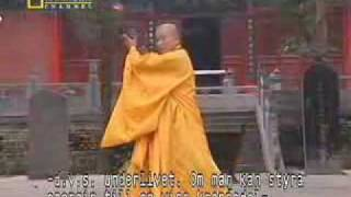 True Power of Shaolin Kung Fu(Shaolin Kung Fu shows us what it's capable of. Comment and tell me what you wanna see! I'll be uploading new videos now! Watch my other Shaolin videos ..., 2007-07-08T18:15:24.000Z)