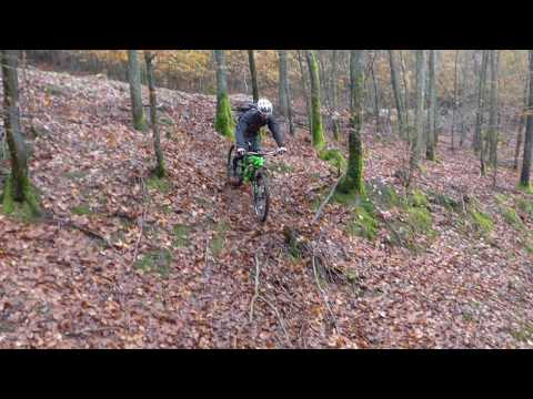 Chemin forestier des pionniers