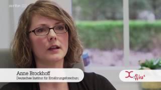 Zuckerersatz   Was taugen Aspartam und Co     Doku 2017 NEU in HD