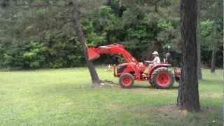 Kubota tractor Vs. Pine Tree