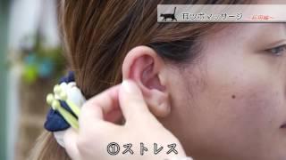 イヤーピクマッサージ 基本編 thumbnail