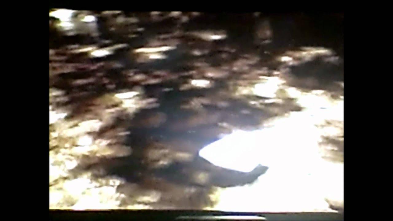 river monsters japanese horrors sneek peek  u0026quot gremlin or