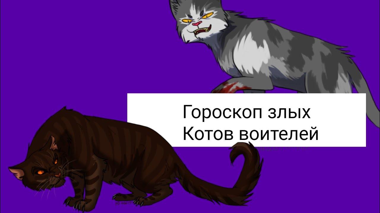 бритая тест кто ты из коты воители с картинками определяется