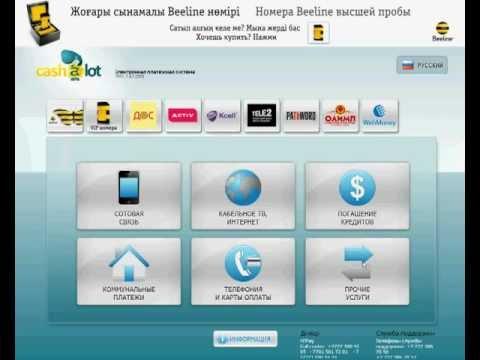 Пополнение WebMoney через терминалы в Казахстане