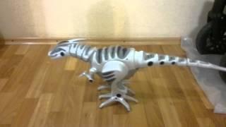 Интерактивная игрушка - Робораптор WowWee Робот Динозавр Roboraptor(Тест работы динозавра., 2015-08-18T19:44:49.000Z)