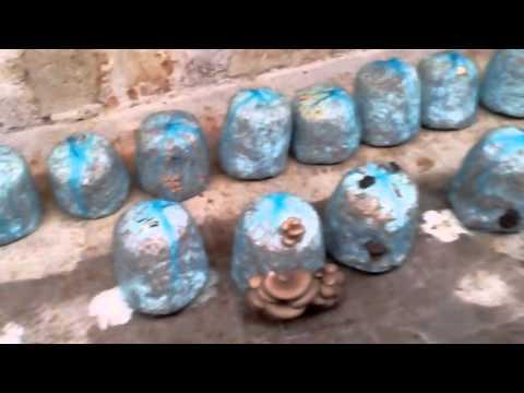 мицелий грибов в армавире