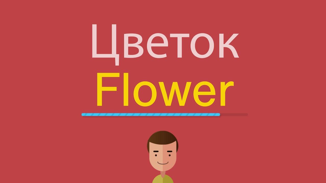 Как сказать по английски цветок