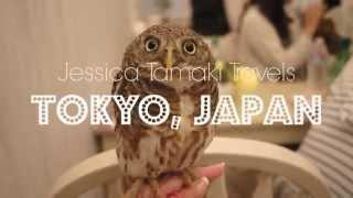Owl Cafe in Tokyo, Japan - Akiba Fukuro