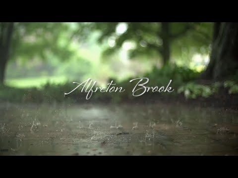 Alfreton Brook