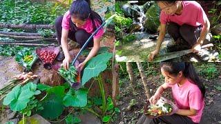 Village Lifestyle in a T๐wn    Organic Naga Girl  🥬🌶️🥒🍅🌽🌱