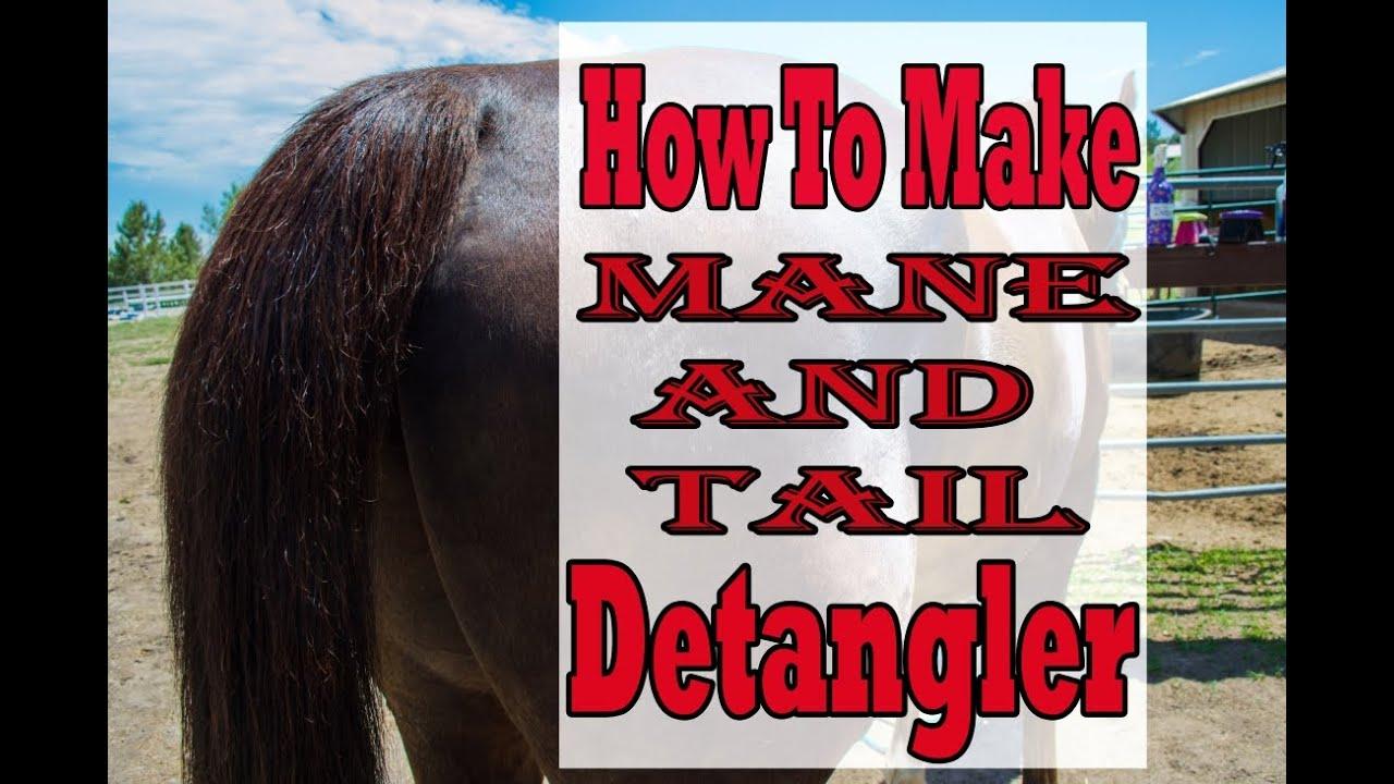 How to make horse mane and tail detangler diy youtube how to make horse mane and tail detangler diy solutioingenieria Gallery
