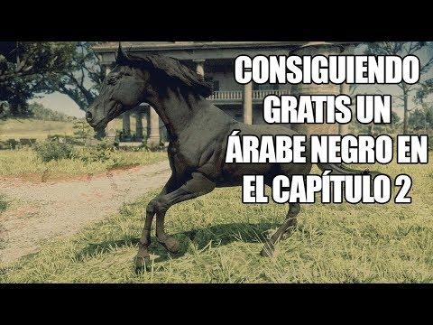 Red Dead Redemption 2 - ¿Cómo conseguir un caballo Árabe Negro GRATIS en el Capítulo 2? thumbnail