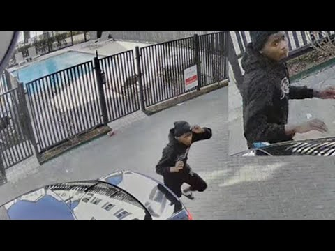 Woman screams for help as robber runs into garage of Houston townhome | HPD video