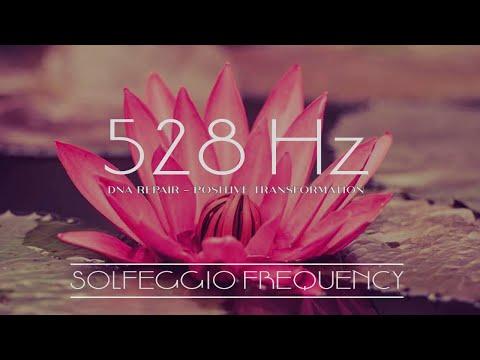 Solfeggio 528Hz La frecuencia del amor - reparación y curación del ADN - Activación del tercer ojo