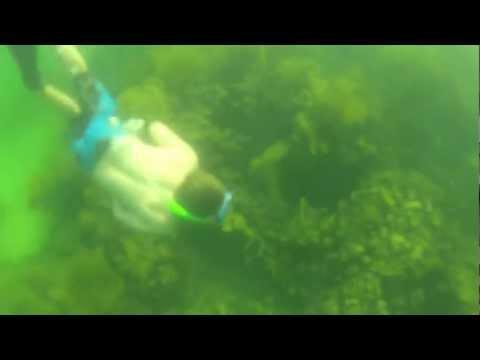 Panama Underwater Natale 2012