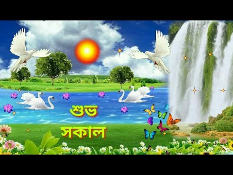 Bengali good morning video.. Beautiful Bengali song.. Love whatsapp video