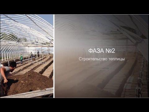 видео: Строительство теплицы. Фаза №2