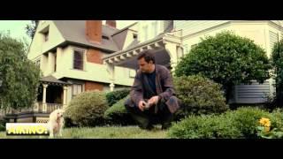 Птицы Америки  (2008). Смотреть онлайн русский трейлер к фильму
