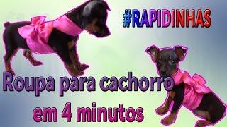 Roupa para cachorro em 4 minutos