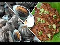 Bendhalu Masala Curry Recipe | How to Cook Sea Snails | Prepared by Village Daddy |