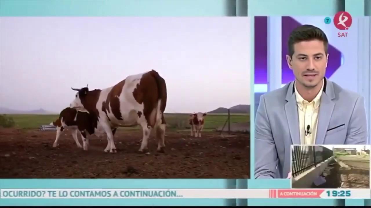 Entrevista en Extremadura Televisión