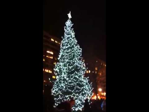 Copley Square Holiday Tree Lighting