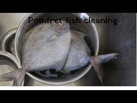 How to Clean Pomfret fish | Vavval fish cleaning