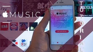 How To Setup Apple Music