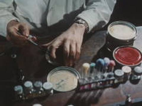 The discovery of penicillin (1964)