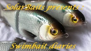 swimbait chronicles: how I made a gizzard shad glide bait